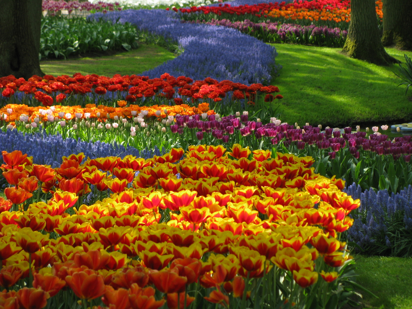 Amazing magazine the world s largest flower garden for Beautiful garden pictures