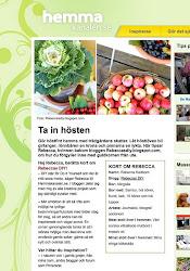 MINA TIPS PÅ HEMMAKANALEN