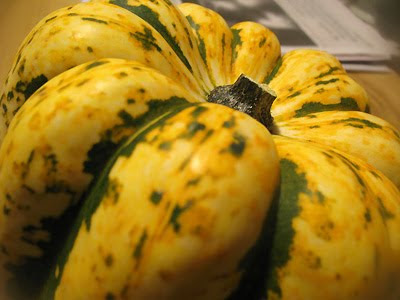 sweet dumpling squash