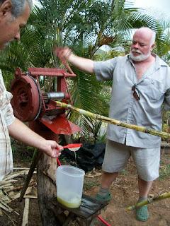 sugar cane tour