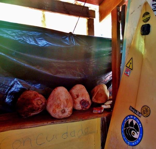 Vivir viajando como mochileros, una experiencia de vida salvaje