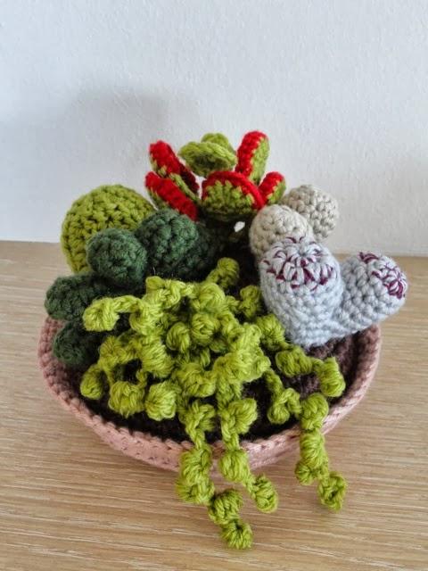 Shabby amelia piante grasse all 39 uncinetto for Piante grasse uncinetto