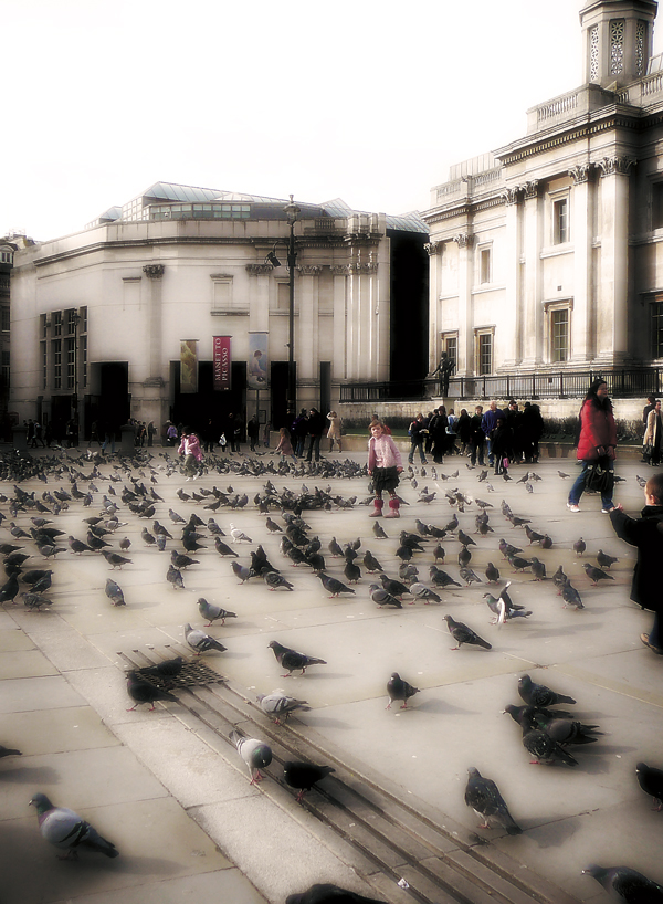 Pidgeon's at London's National Art Gallery