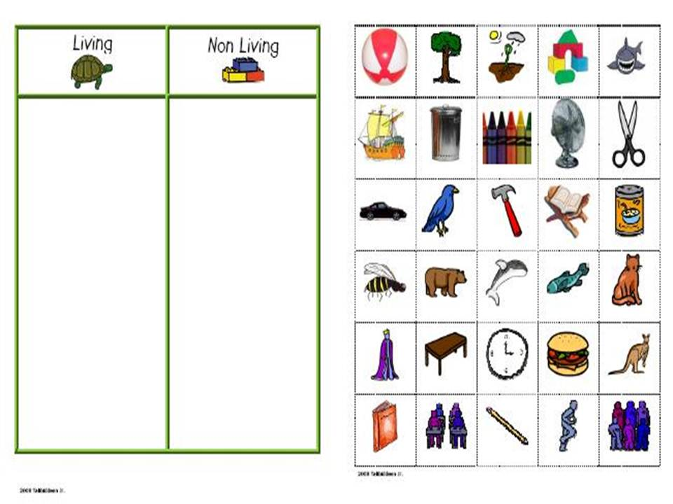 Printables Living And Nonliving Things Worksheet living and nonliving things worksheet plustheapp examples of as
