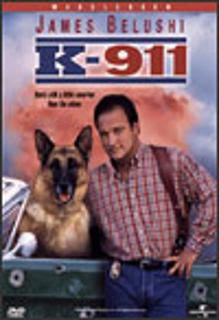 descargar Superagente K-911 – DVDRIP LATINO