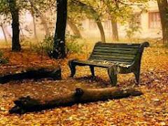 En el otoño se respira paz y tranquilidad, te gusta el otoño?