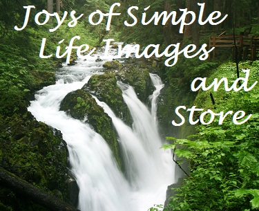 Joys of Simple Life Images and Store