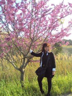 volgendo lo sguardo il blog di Iacopina Maiolo