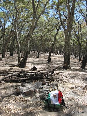 Puerto para acampar en la Sierra de San Juan Cosalá