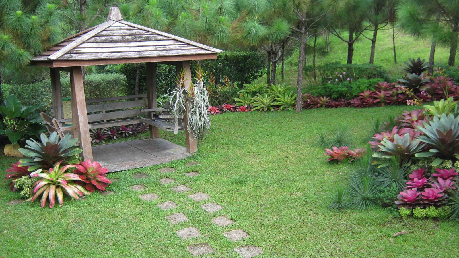 Philippine gardener gardens at crosswinds tagaytay for Pocket garden designs philippines