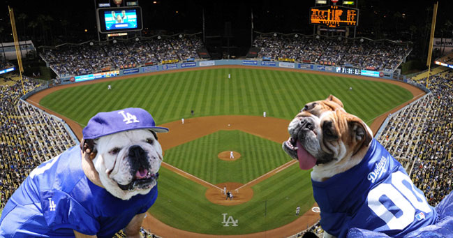 All You Can Eat Dodger Dog Tickets