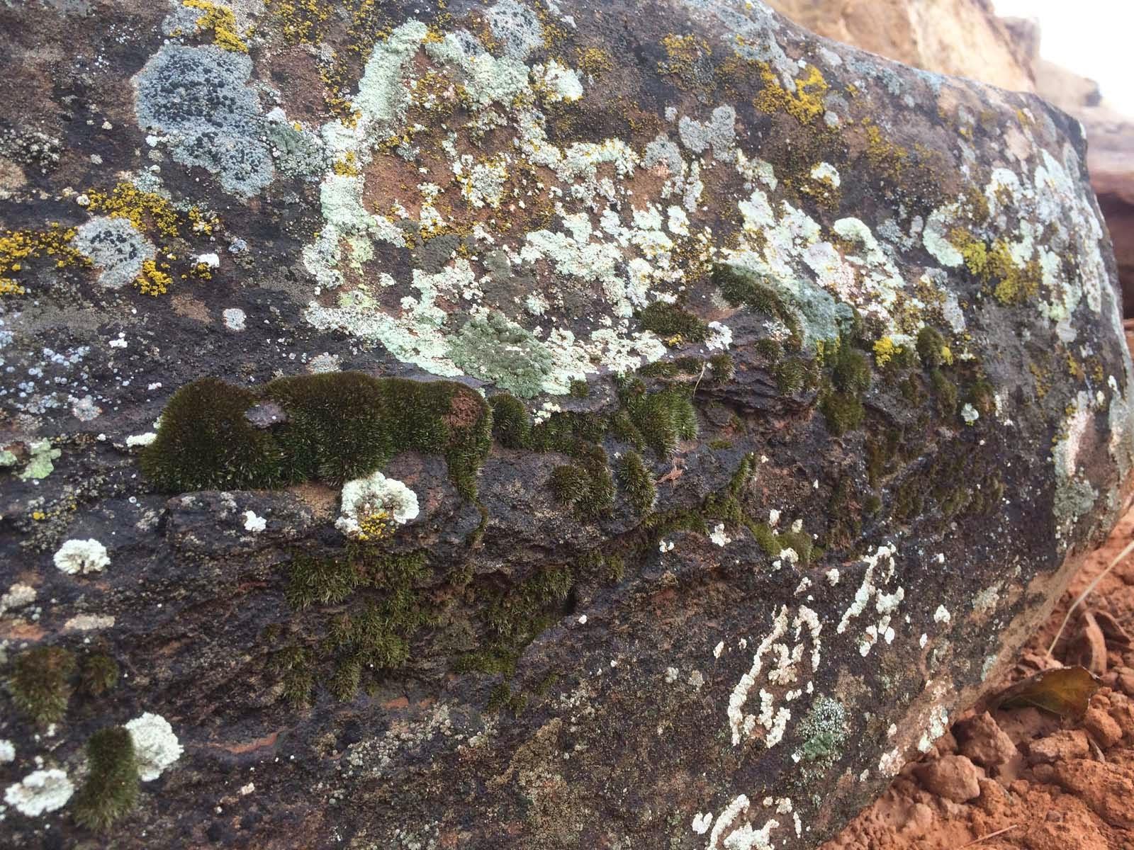 Landscape Rocks Boulders St George Utah