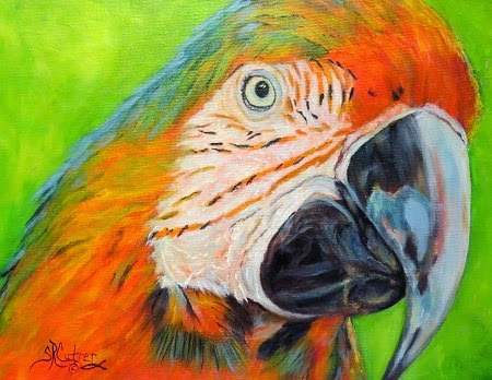 """Hey, May Called"" , Macaw in oils"