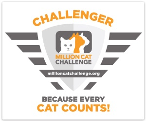 Participant in the Million Cat Challenge!