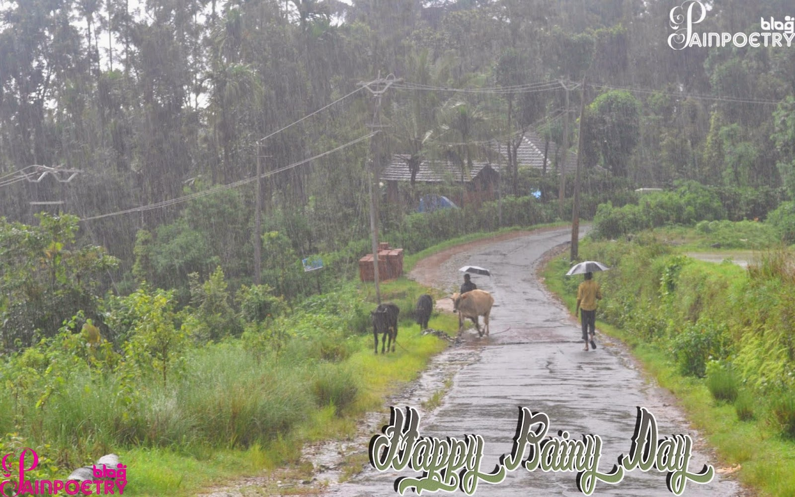 Happy-Rainy-Day-Enjoing-Pic-HD