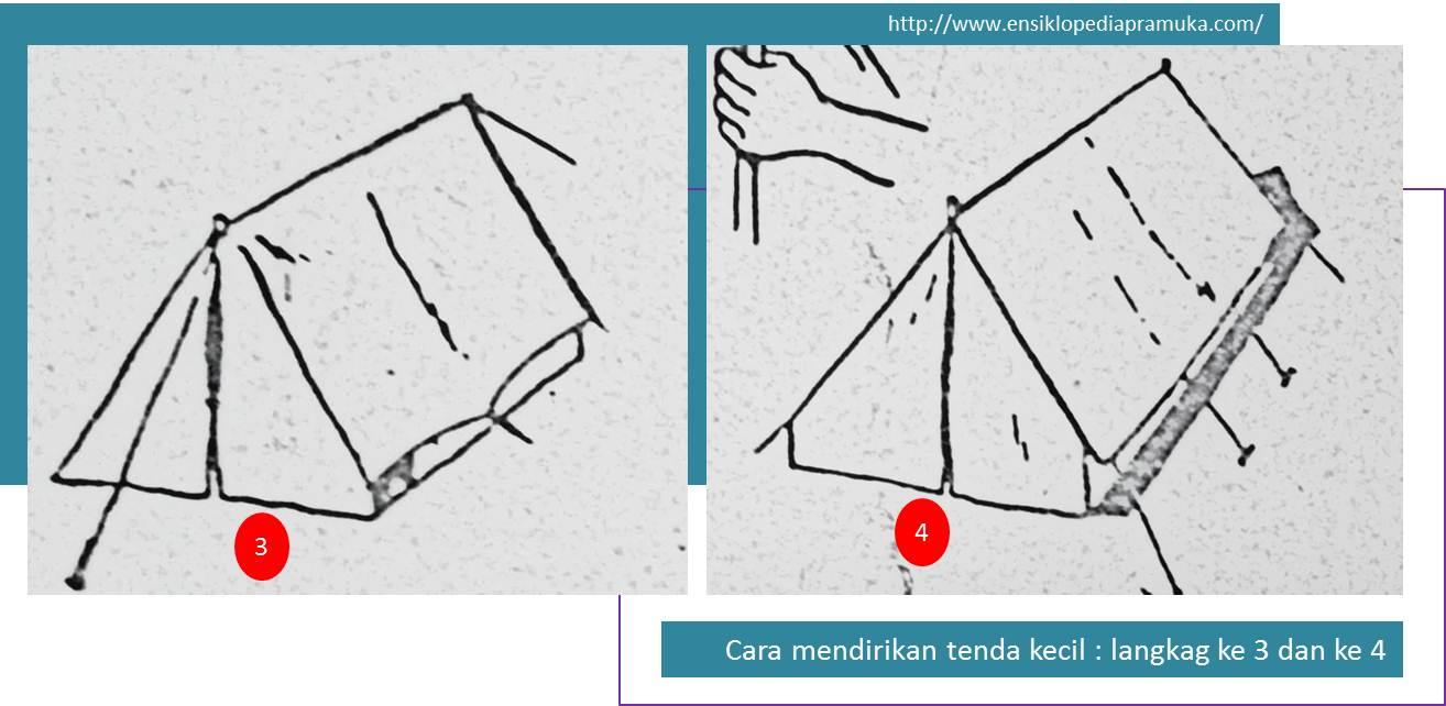 Langkah 2 Tegakkan tongkat bagian belakang kemudian ikatkan tali pada patok baik yang depan maupun di sudut kanan kiri tenda