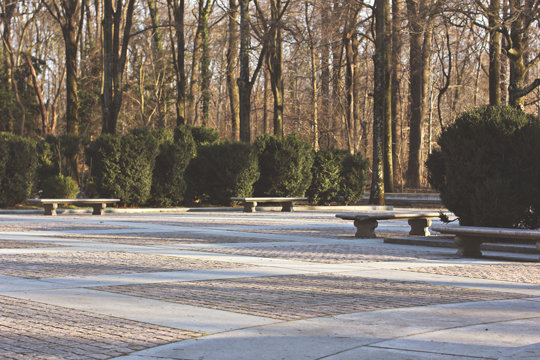 Theodore Roosevelt Island Park, Arlington, VA