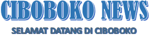 CIBOBOKO