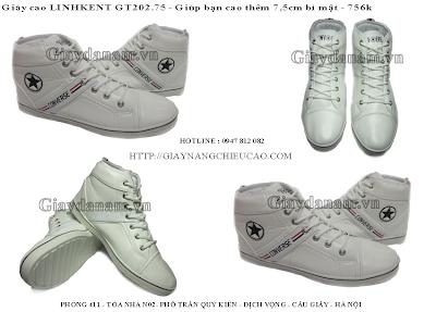 Giày nam GT202. 75