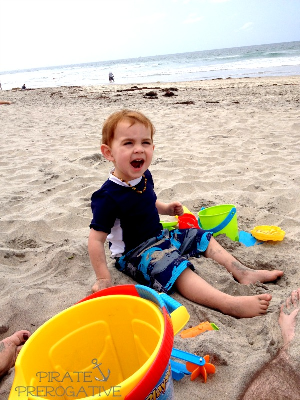 Screaming at the beach and other things that toddlers do.