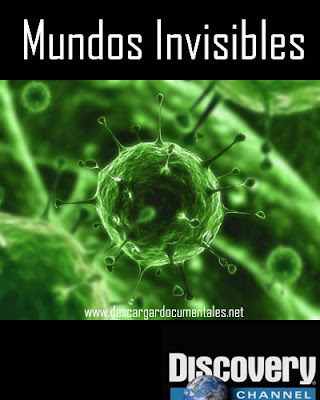 documental mundos invisibles discovery channel