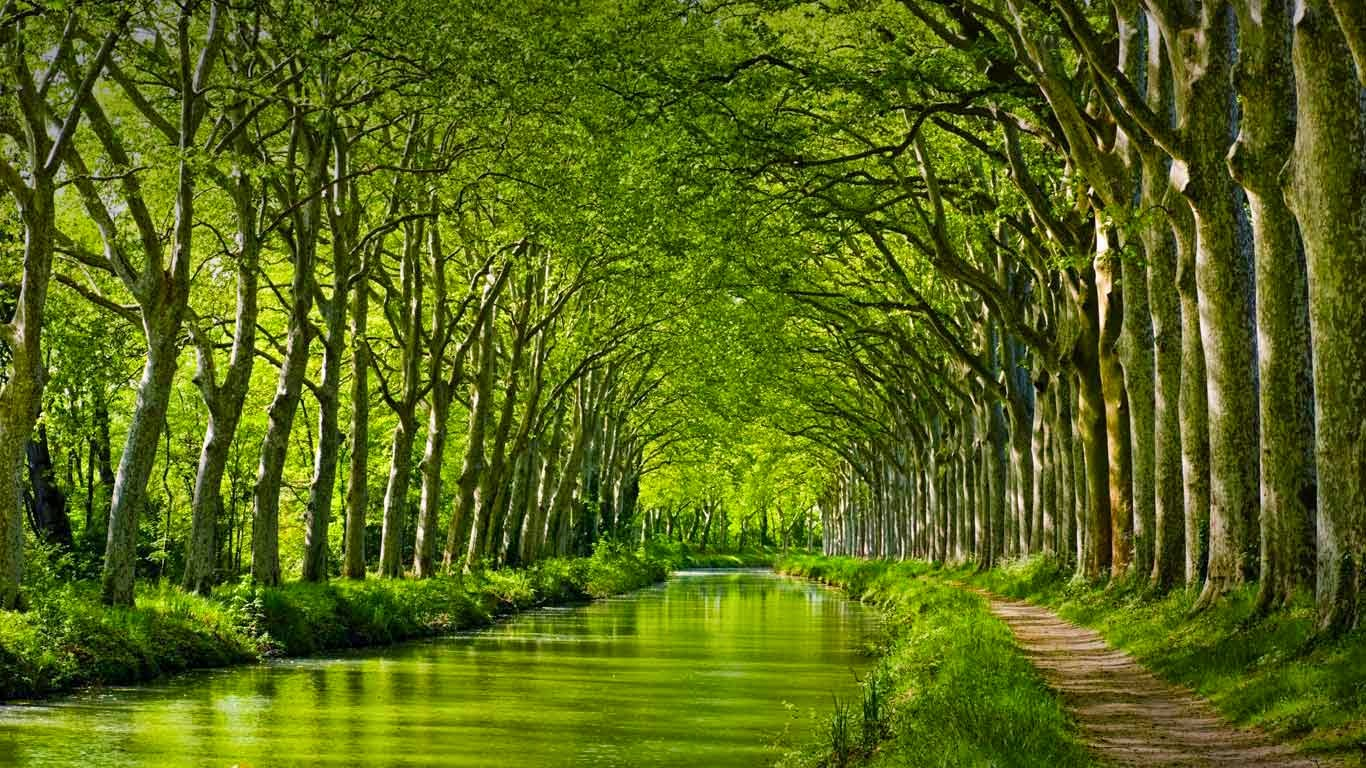 Canal du Midi in late spring, Toulouse, Haute-Garonne, Midi-Pyrénées, France (© Yuryev Pavel/Shutterstock) 559