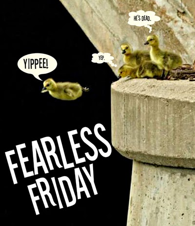 fearless friday, comfort zone