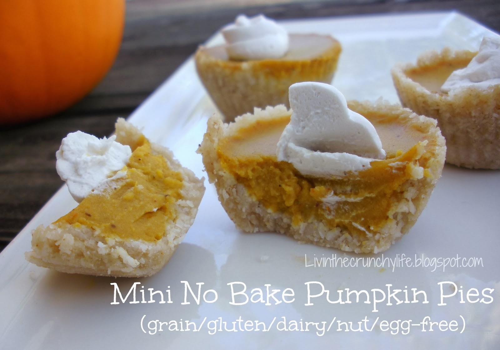 Mini No Bake Pumpkin Pies with Coconut Whipped Cream (grain, gluten, nut, egg-free)