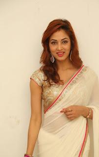 Actress Vidisha Srivastava Latest Pictures in Saree at Harinath Wedding Reception  20.jpg