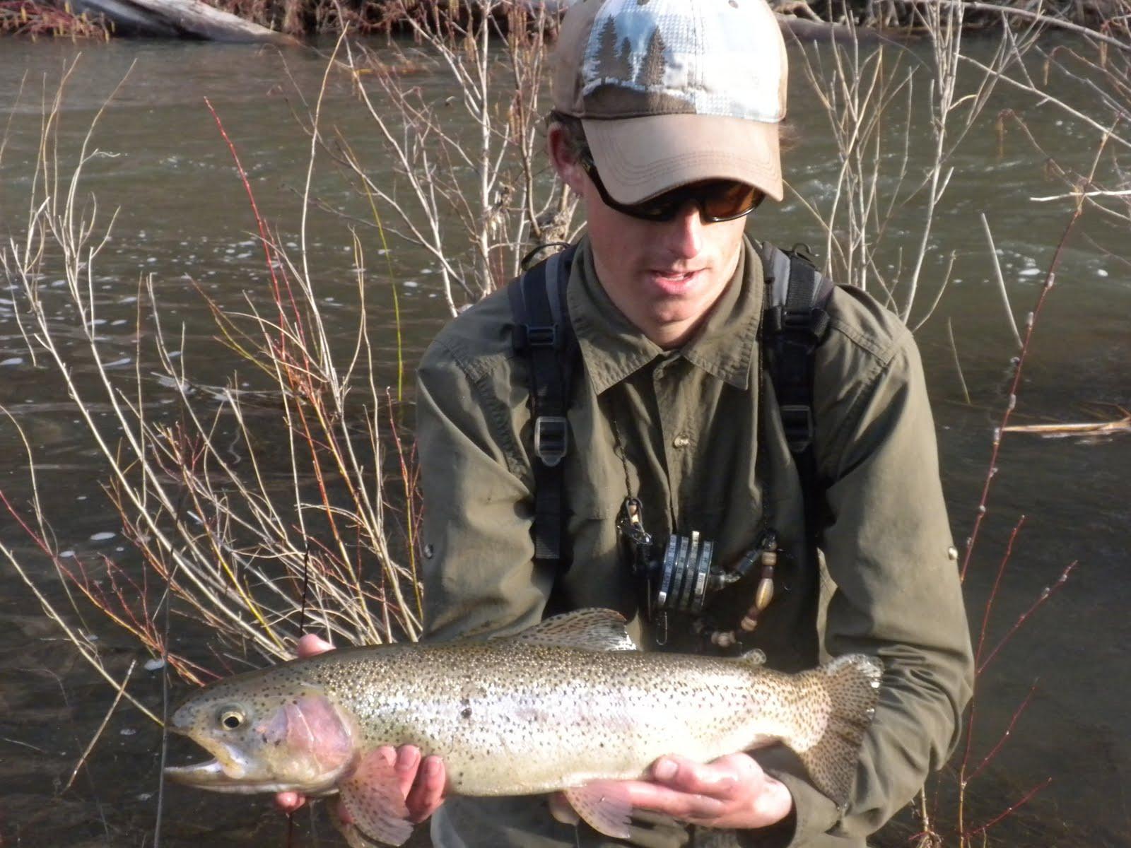 Arizona fly fishing clear creek for Fishing in az