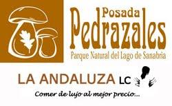 PATROCINADORES CRYOSANABRIA - MONT BLANC