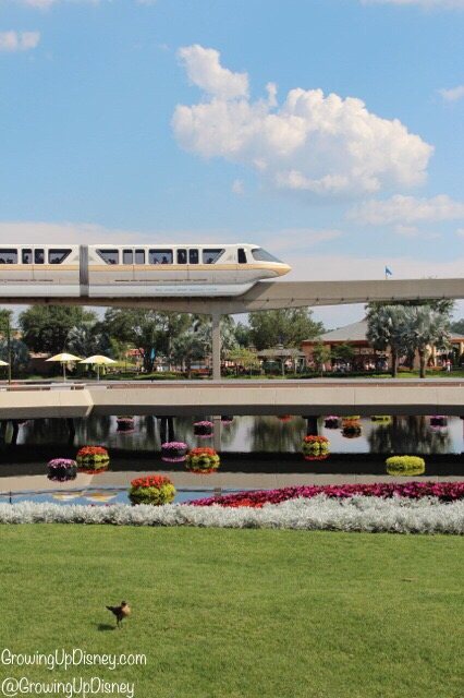 monorail driving through Epcot, World Showcase, Growing Up Disney