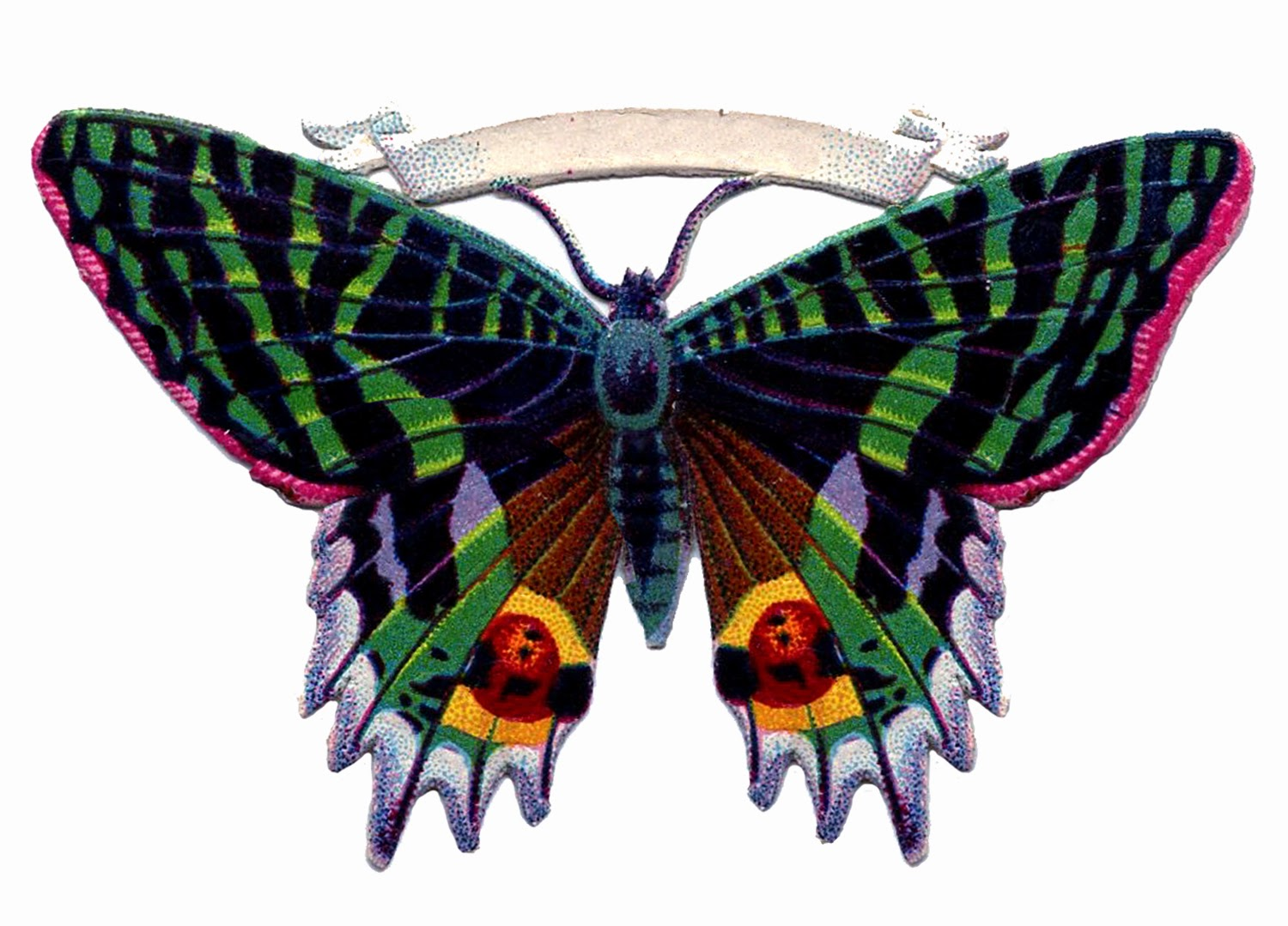 the end time exalting the of jesus through essays on vintage butterfly drawing the graphics fairy