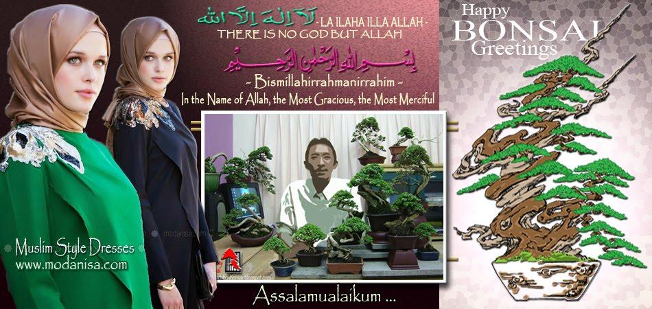 bonsai turkey hijab moslem jilbab islam modanisa fashion