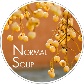 Normal Soup