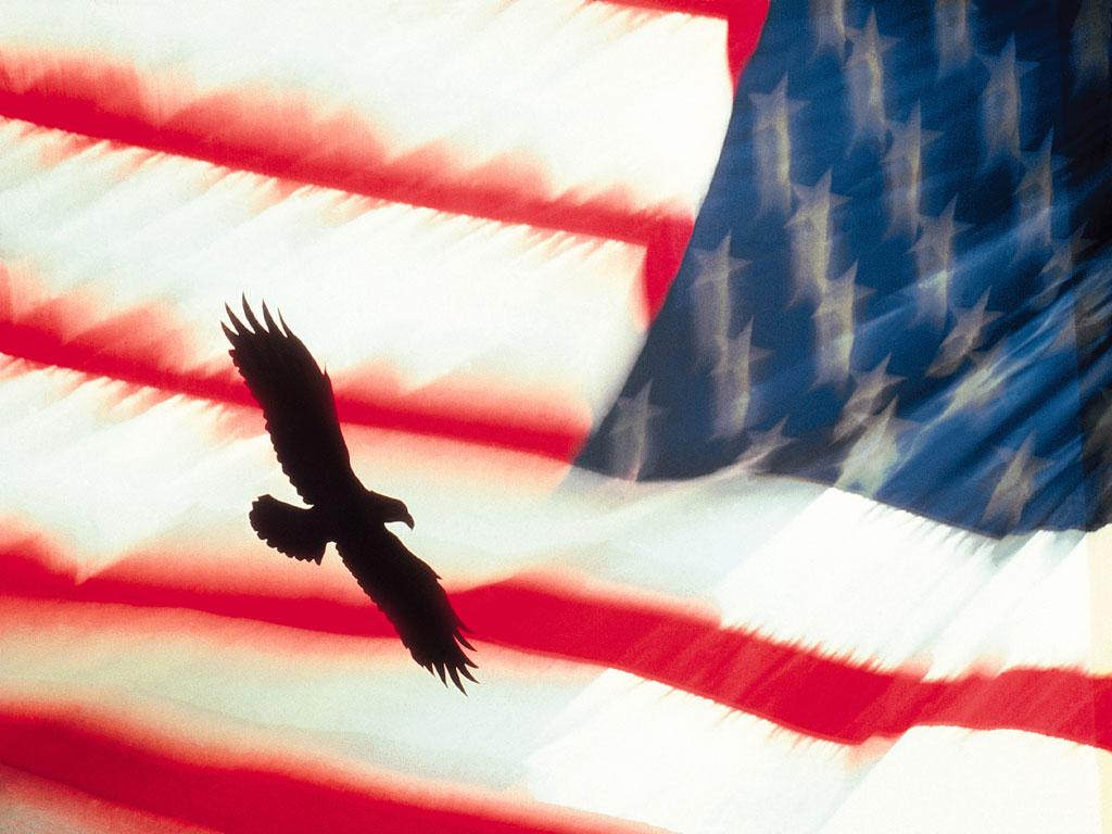http://1.bp.blogspot.com/-KlXNqarxWEQ/T8csNpBSAEI/AAAAAAAAEE4/b3wpXbvHb20/s1600/Bald+Eagle+Flying+with+American+Flag.jpg