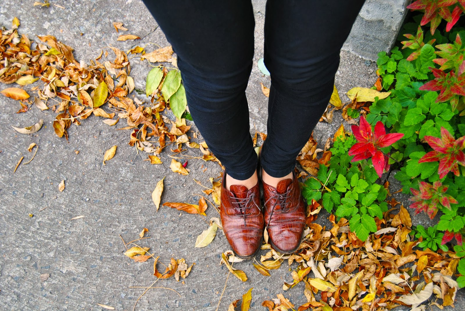brown oxford shoes fall fashion