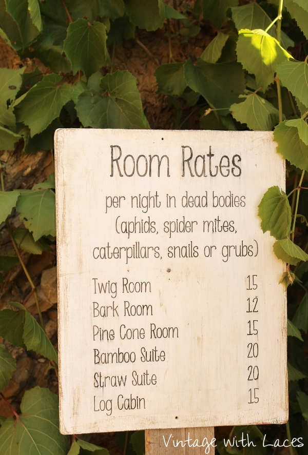 Reclaimed Wood Insect Hotel - Room Rates