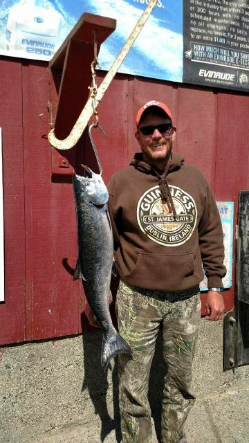 Lawson 39 s landing fishing report may 2015 for Tomales bay fishing report