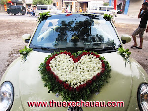 Hoa xe cưới MS011