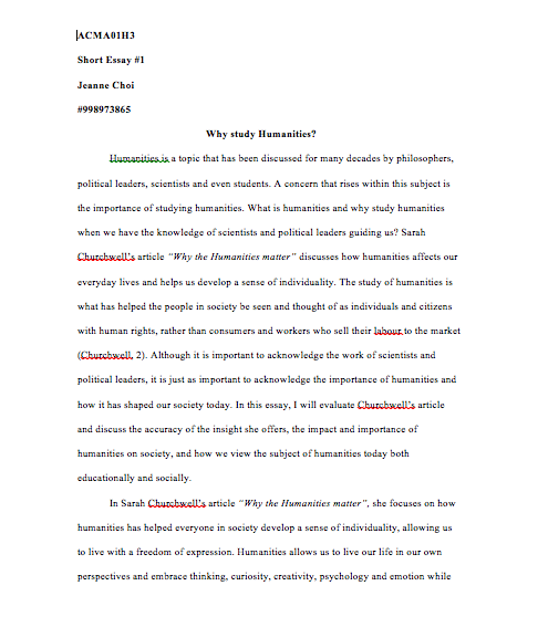My hero essay assignment