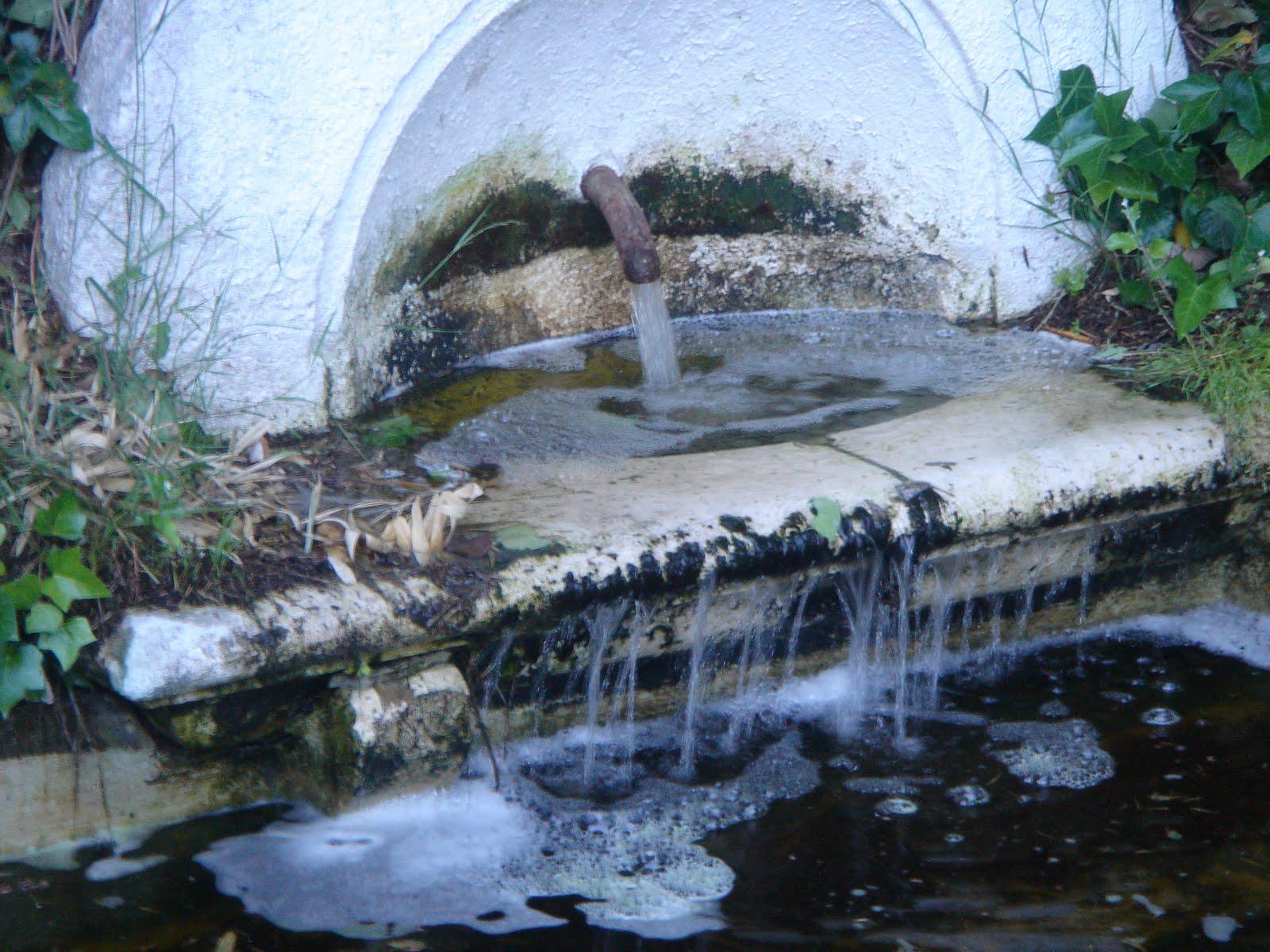 Historia y genealog a la quinta de los molinos madrid for Piso quinta de los molinos