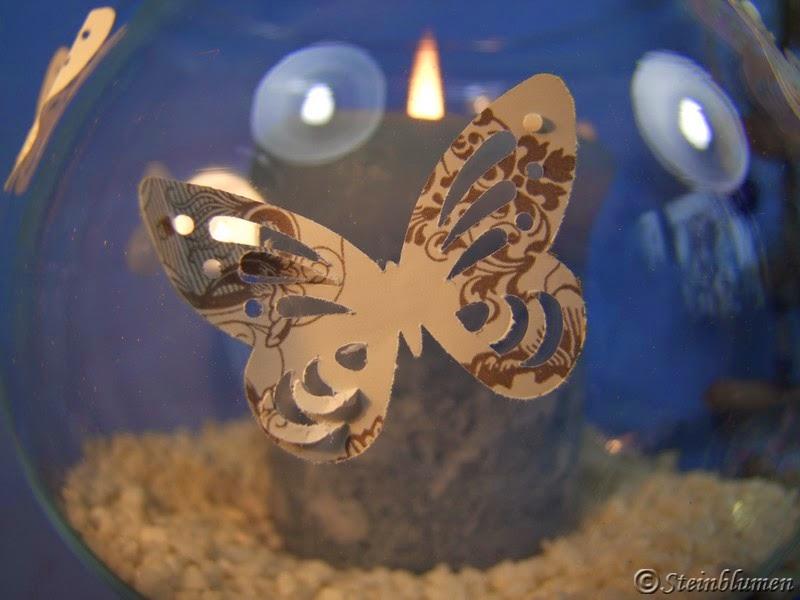 Schmetterling Stanzer