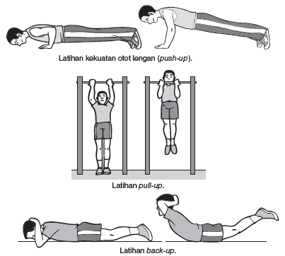 latihan daya tahan otot Diketahui juga bahwa rata-rata daya tahan otot pada laki laki adalah 0 sedangkan rata-rata daya tahan otot metode latihan oxford adalah 0167041 lebih besar dari.
