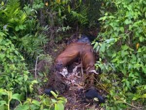 Hallan cadáver de empresario español desaparecido en República Dominicana