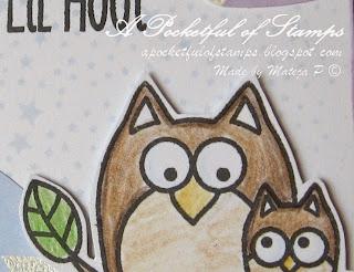 http://ablognamedhero.blogspot.com/2015/05/my-lil-hoot-bookmark.html