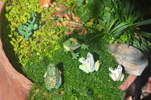 Check Out These Adorable Ceramic Frog Figurines From Siamsmalls.com,  Perfect For A Terrarium Or A Fairy Garden. The Frogs Sport A Variety Of  Poses And ...
