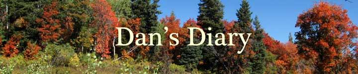 Dan's Diary