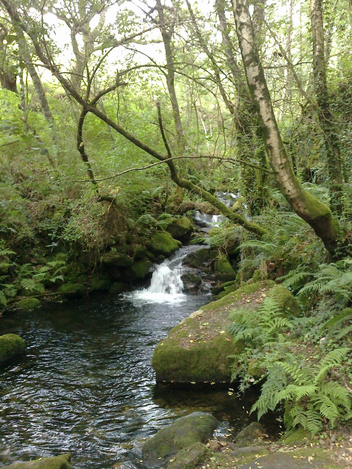 Cascada en la ruta de Riamonte