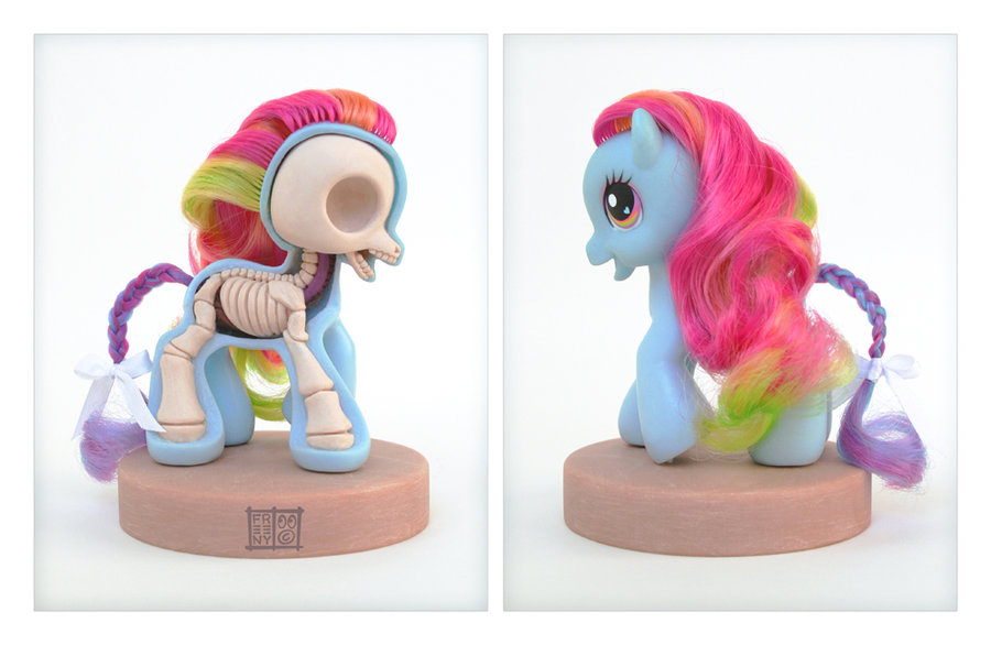 LA CIENCIA DE LA VIDA: Anatomía interna de un pequeño pony